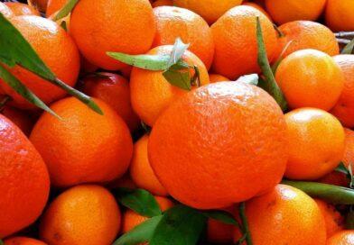 The deadly danger of oranges is named